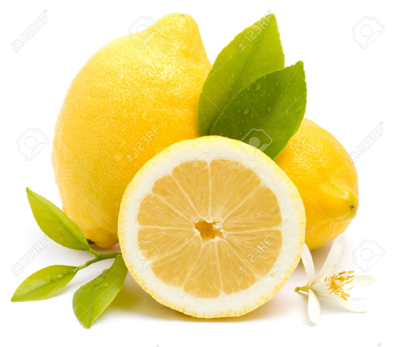 Australian lemon growers should export