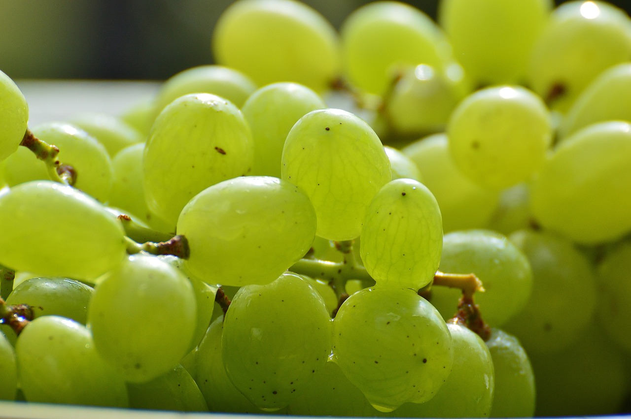 grapes-pixabay.jpg