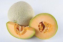 United Arab Emirates - AHEIA   Australian Horticultural Exporters