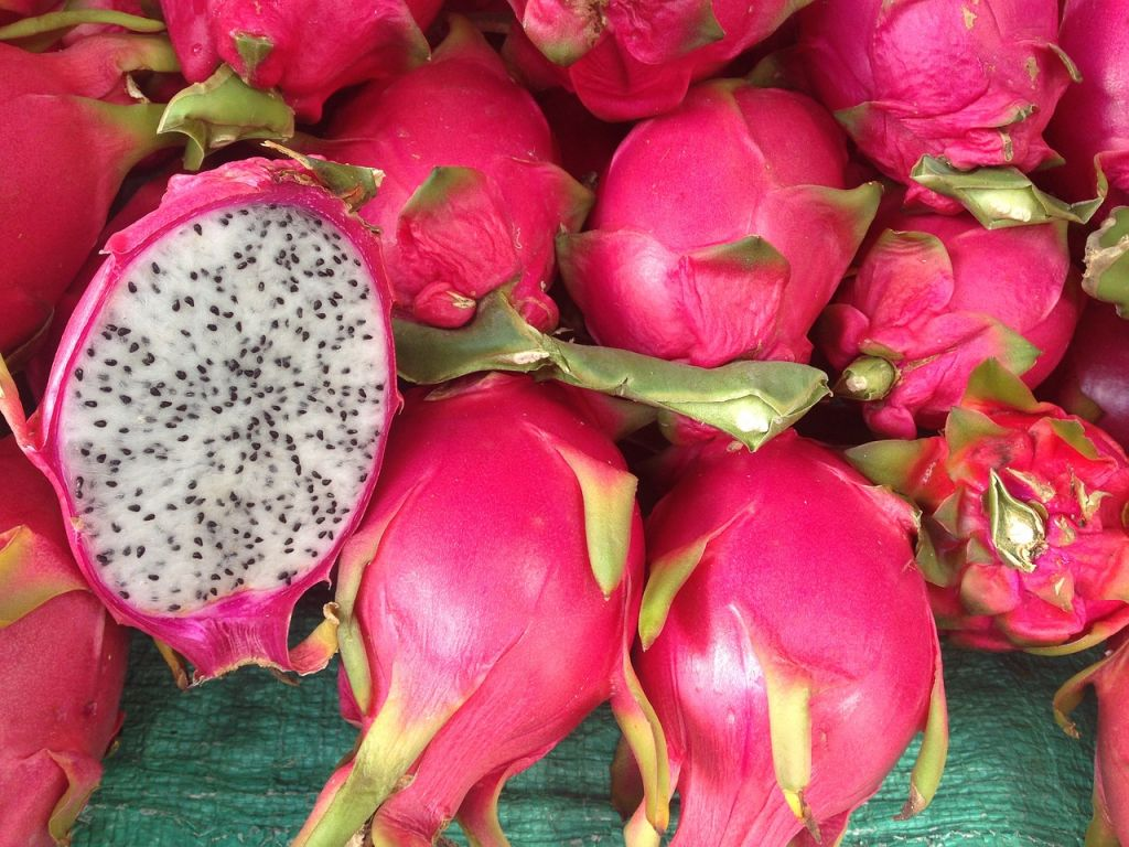 First dragon fruit imports from Vietnam defended by