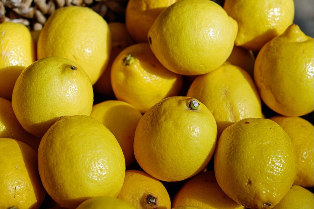 Lemon Lime Aheia Australian Horticultural Exporters And